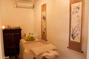 Acupuncture and Chinese Medicine - Sunshine Coast